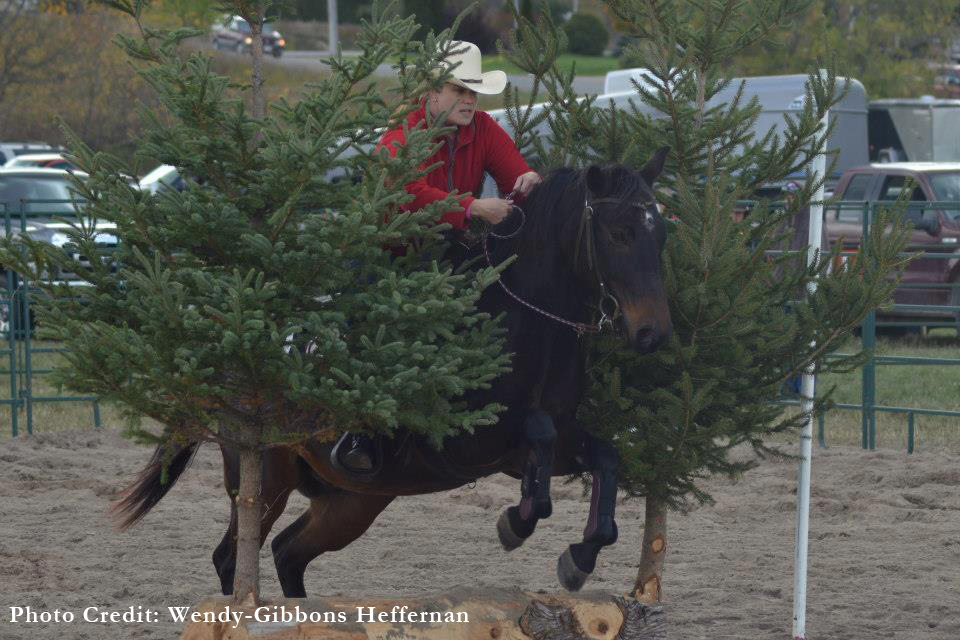 Events Ontario Xtreme Cowboy Race Exca Sanctioned Event